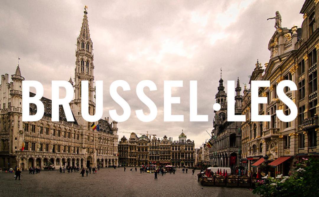 Catedral de brusel·les